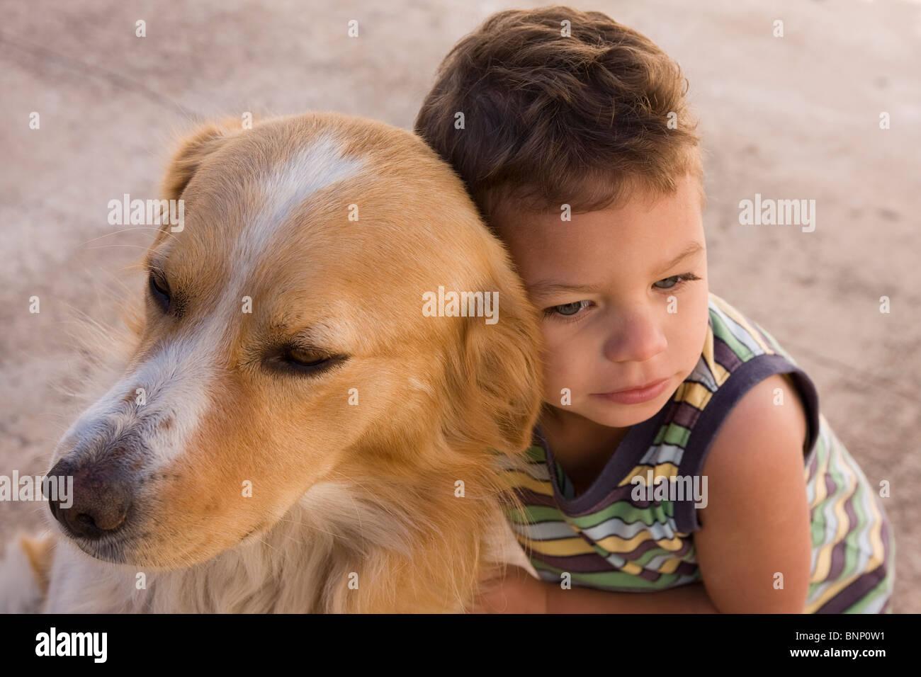 toddler boy cuddling brown and white pet dog - Stock Image