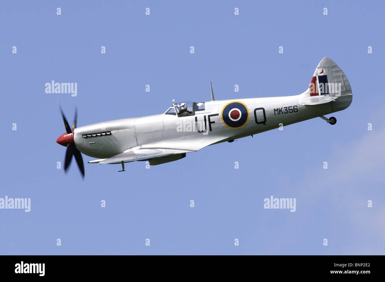 Supermarine Spitfire LFIXe plane operated by the RAF Battle of Britain Flight. - Stock Image