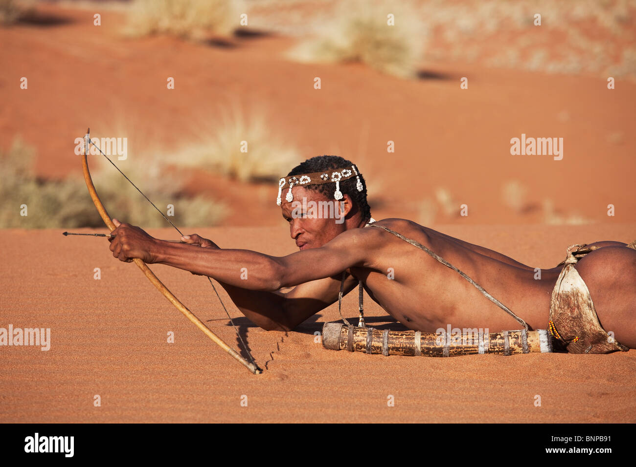 Bushman/San People. Male San hunter armed with traditional bow and arrow. - Stock Image