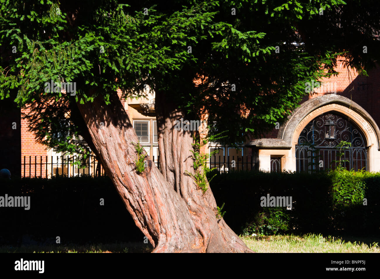 The entrance gate of Enfield Grammar school, London - Stock Image