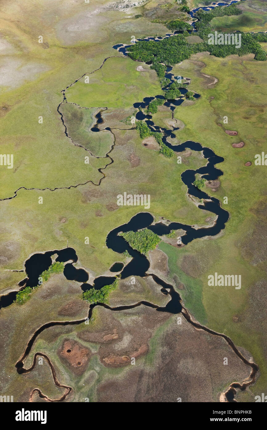 Aerial view of river meander with oxbow lakes Gran Sabana or Great Savanna Canaima National Park  Venezuela  south - Stock Image