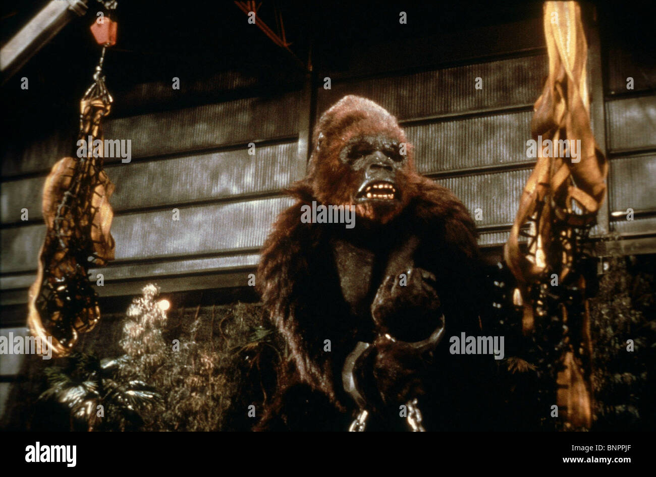 king kong 1986