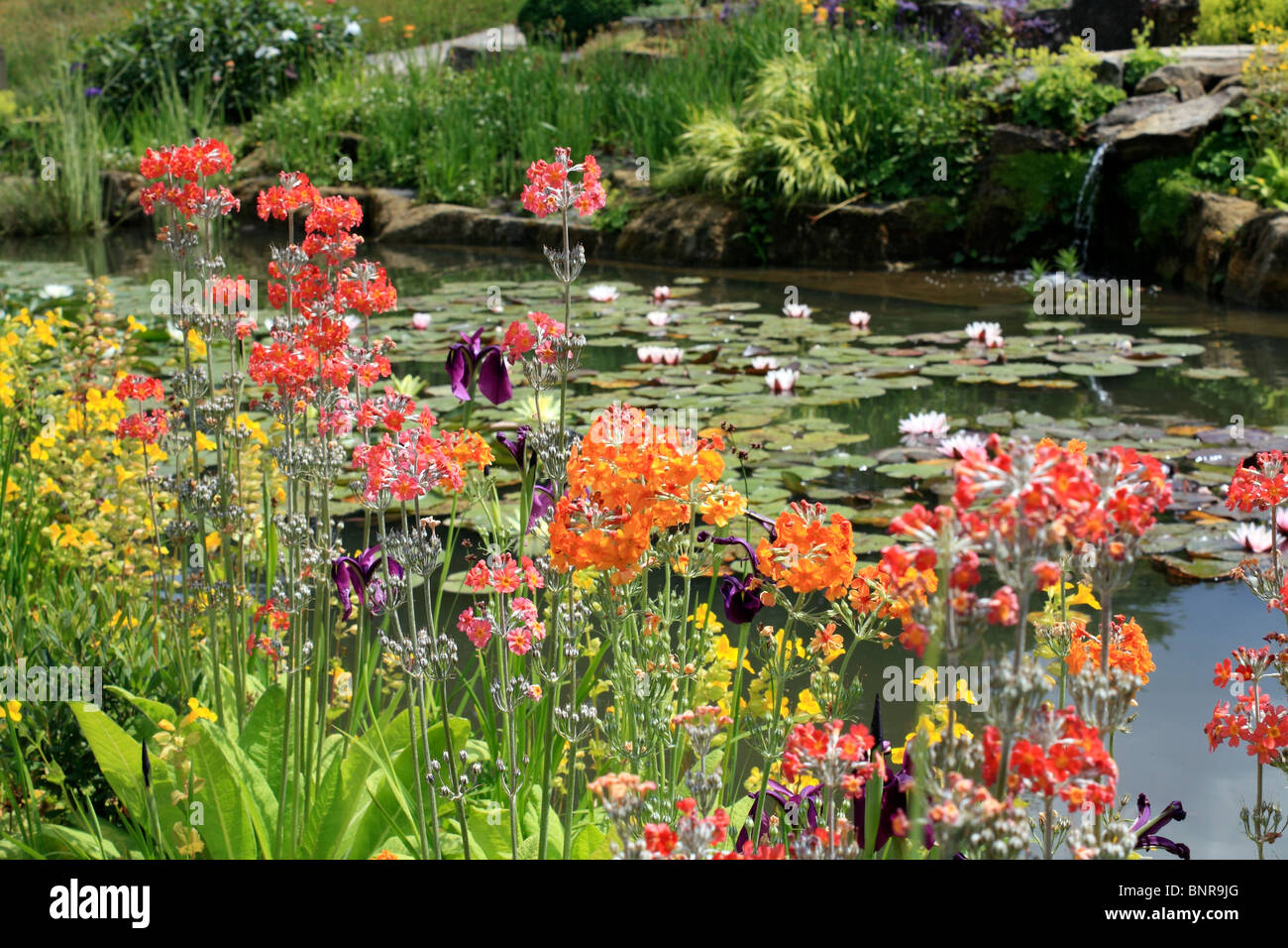 Pretty Garden Scene With Flowers And A Pond Surrey England Uk Stock