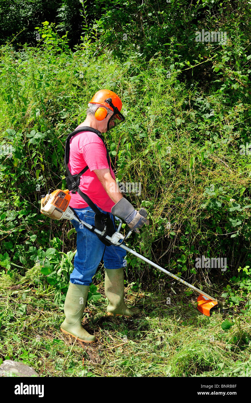 A worker using a brush cutter to cut down a jungle of undergrowth. Space for text against the greenery. Stock Photo