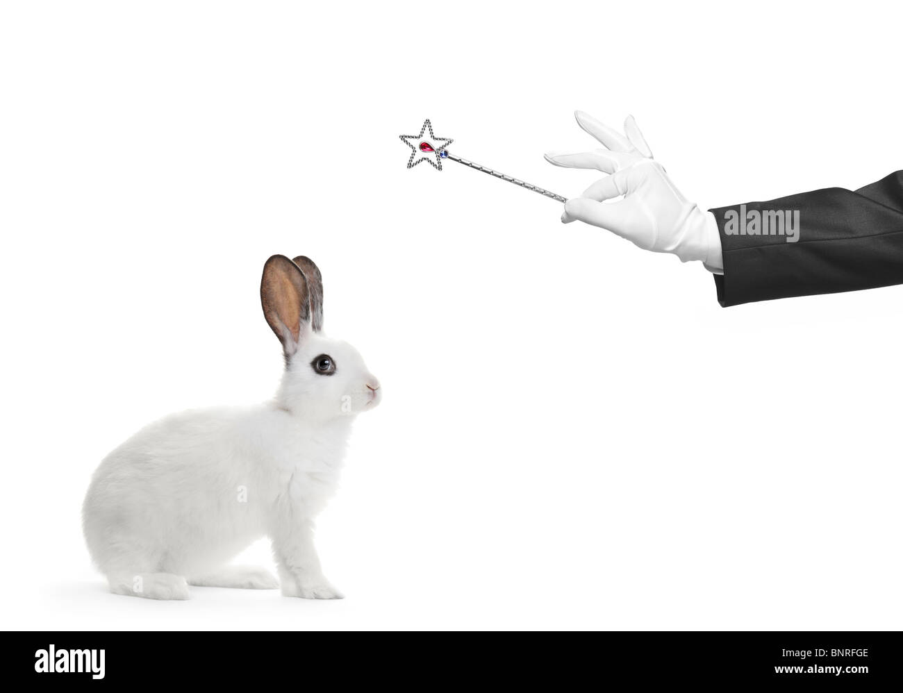 A rabbit and hand holding a magic wand - Stock Image