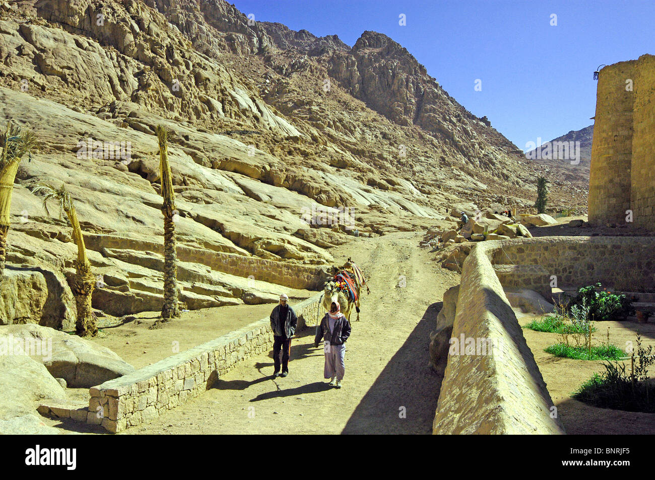 Local life outside St. Catherine's Monastery in the rocky mass of Sinai. Stock Photo