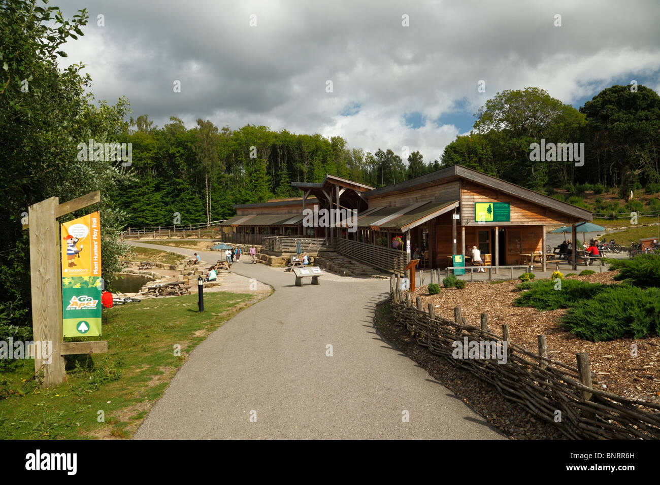 Bedgebury National Pinetum and forest visitor centre. - Stock Image