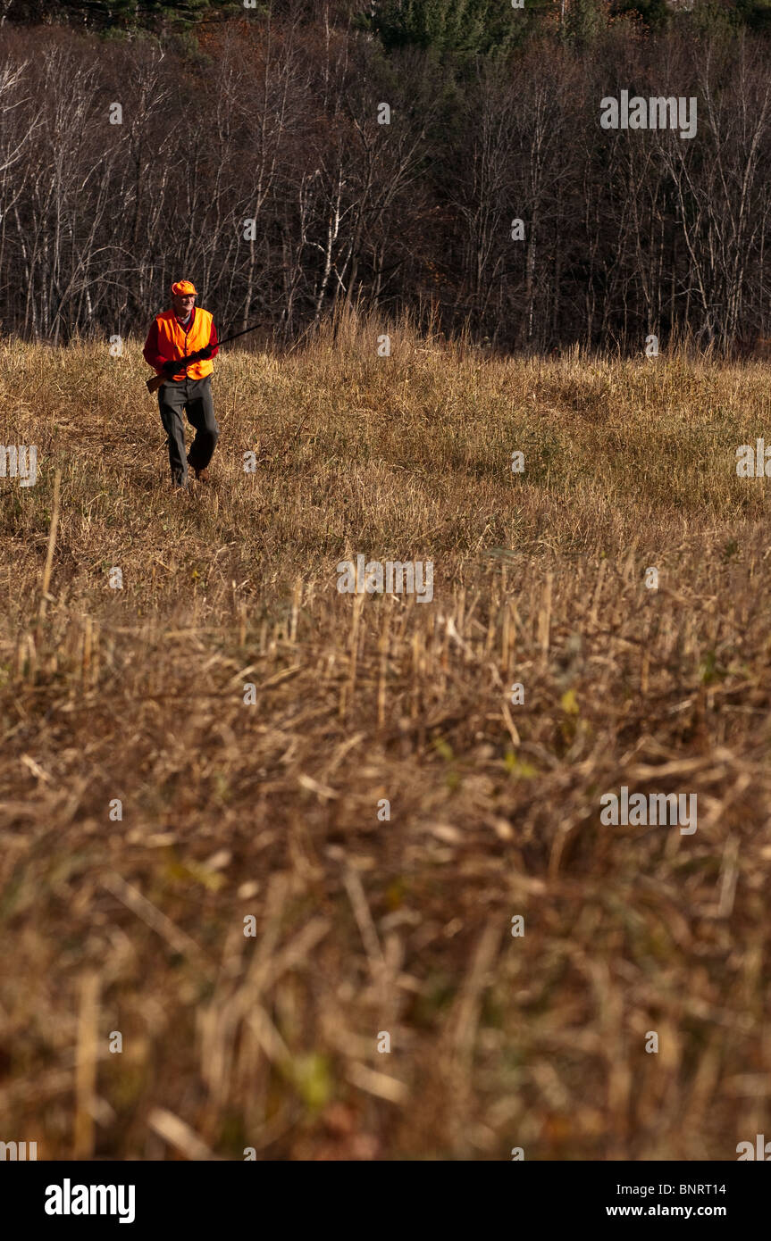 Older man bird hunting in a field. - Stock Image