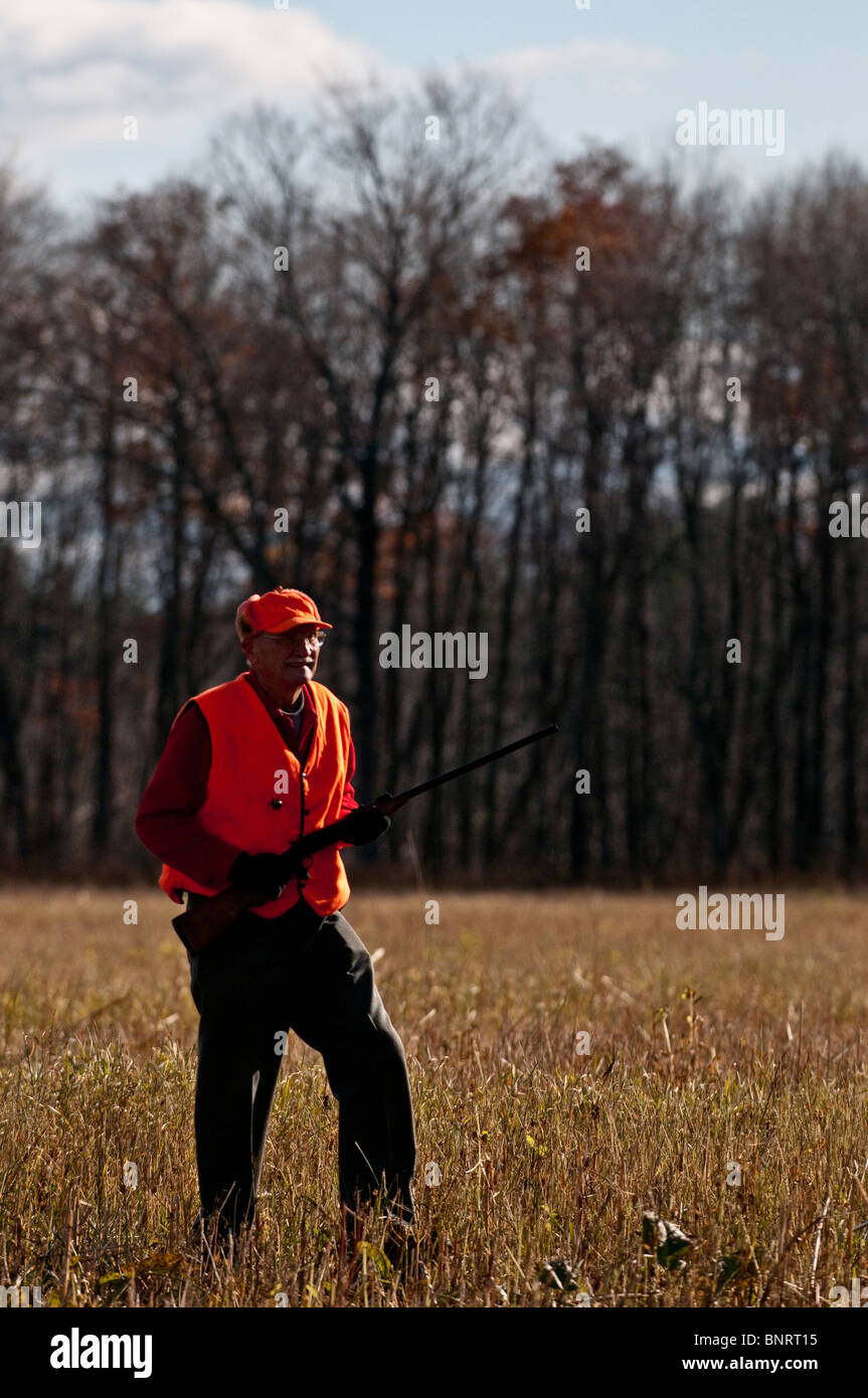 Older man bird hunting in a field with a shotgun. - Stock Image