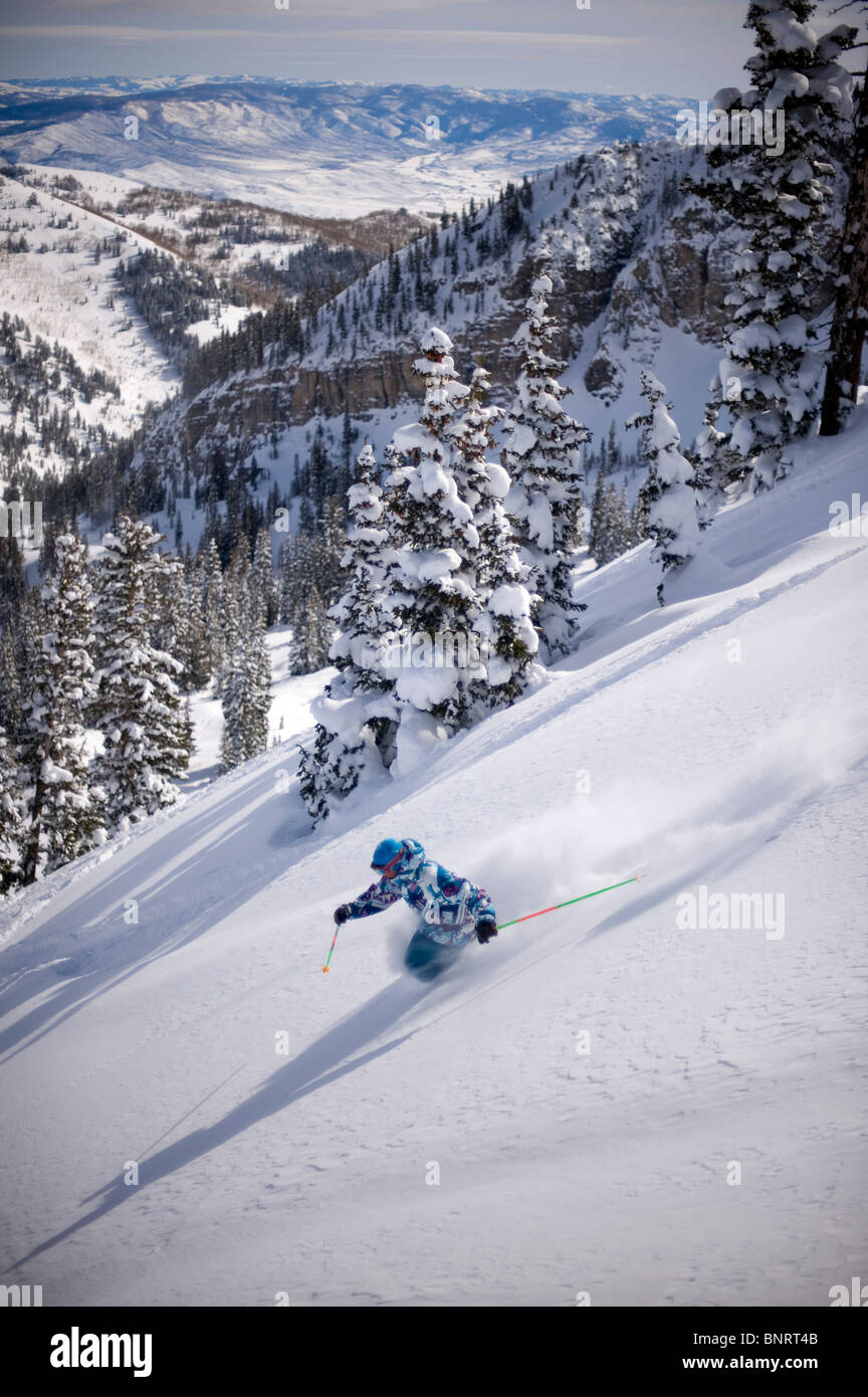Man skiing deep powder, Alta, Utah. - Stock Image