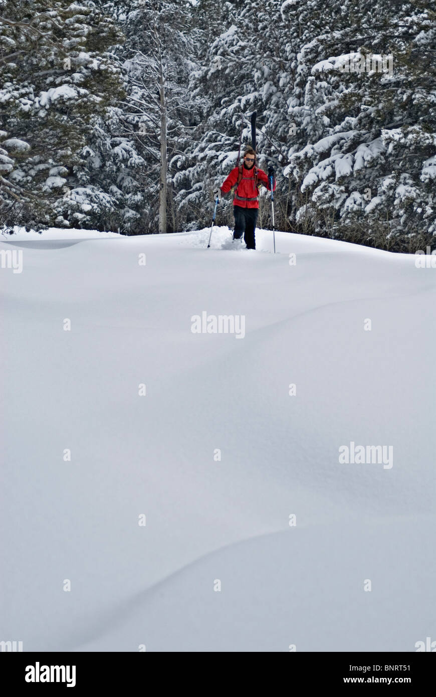 In search of fresh tracks, a young man hikes through knee-deep snow after a night of snowfall, in Lake Tahoe, Nevada. - Stock Image