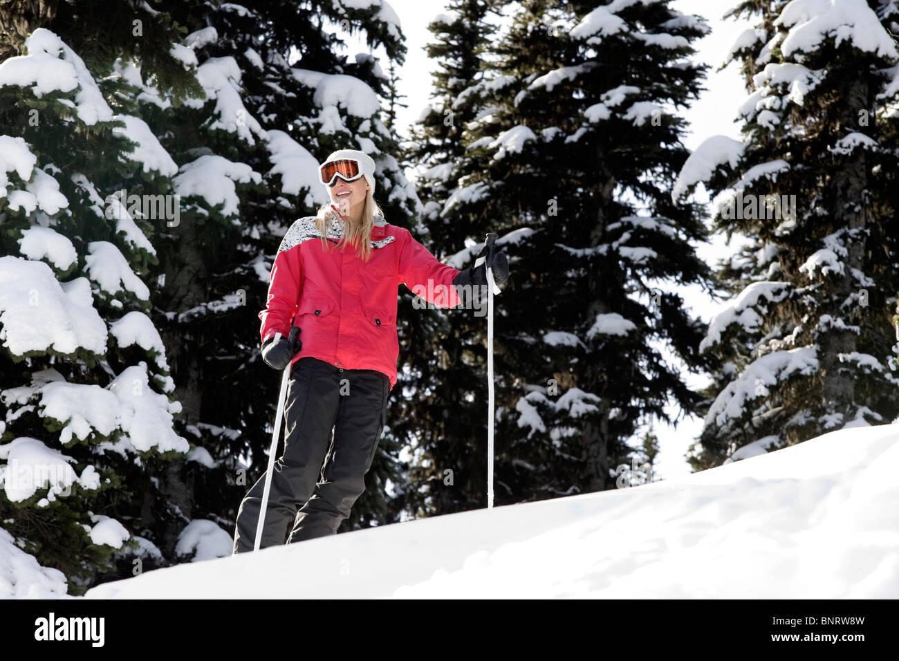 A woman skis among snow flocked trees. - Stock Image
