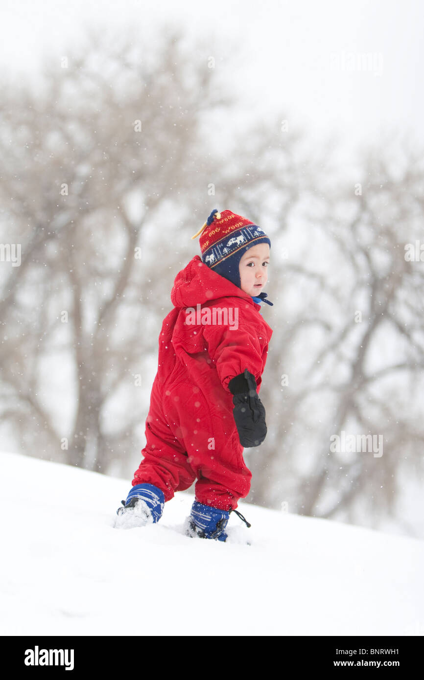 A two year old boy plays in a snowy field during a snowstorm in a red snowsuit in a park, Fort Collins, Colorado. - Stock Image