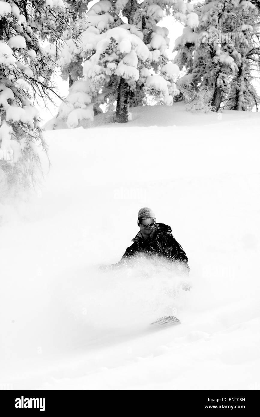 A man snowboards in powder snow on Teton Pass. - Stock Image