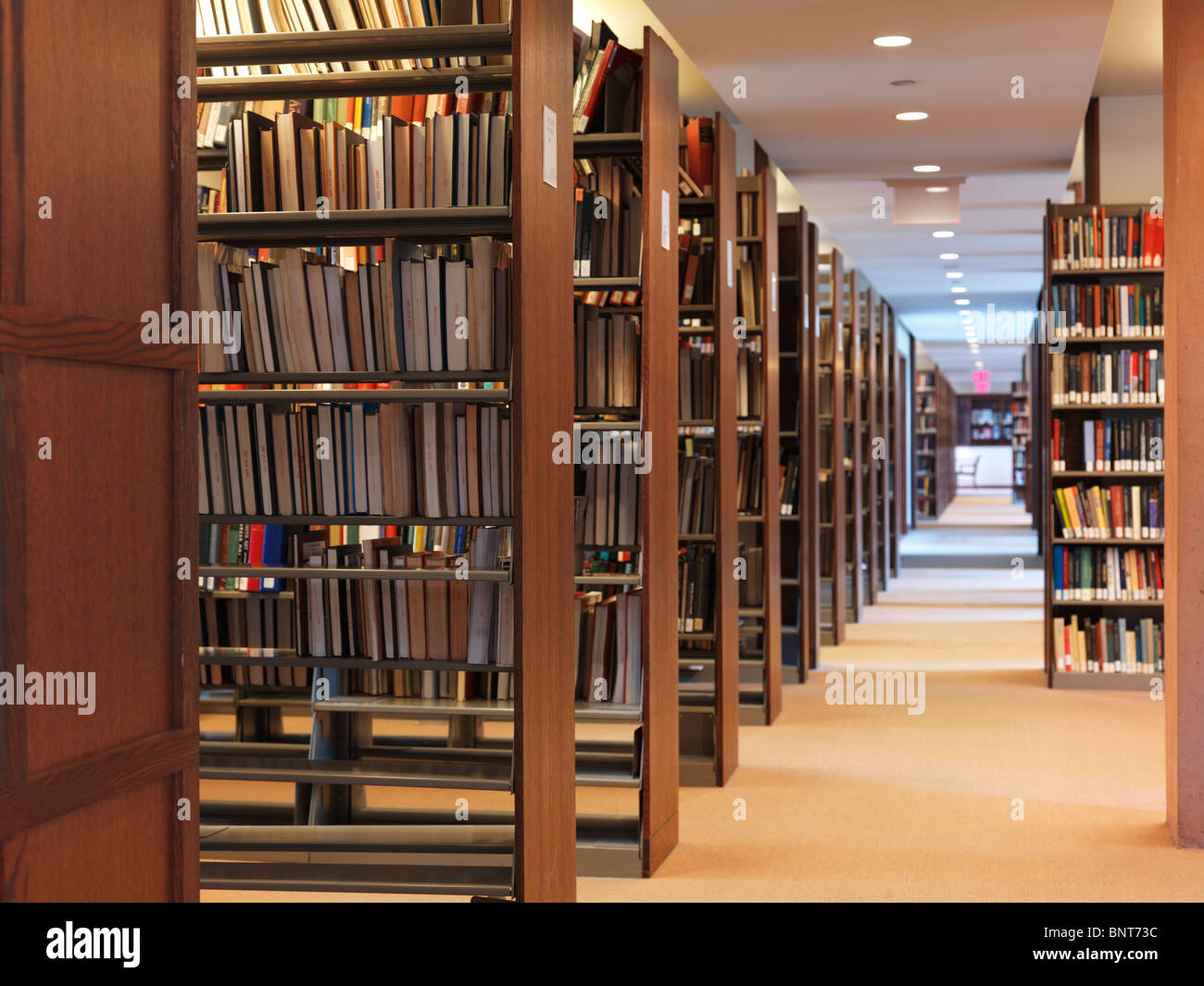 rows of bookshelves in a library stock image - Library Bookshelves