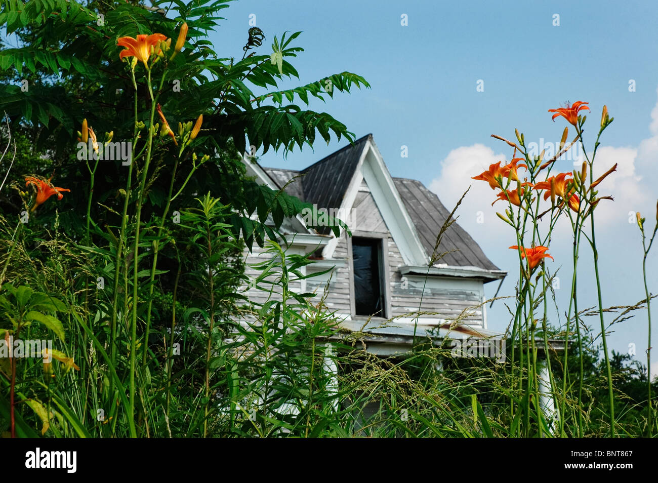 Abandoned farm house along the Tebbs Bend Civil War battle site road near Green River, KY. Stock Photo