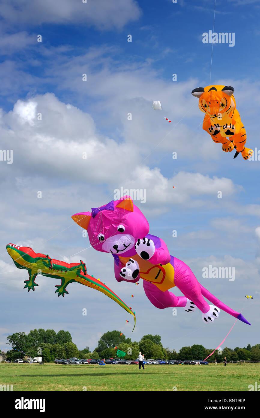 Flying Kites - Malmesbury Kite Festival - Stock Image
