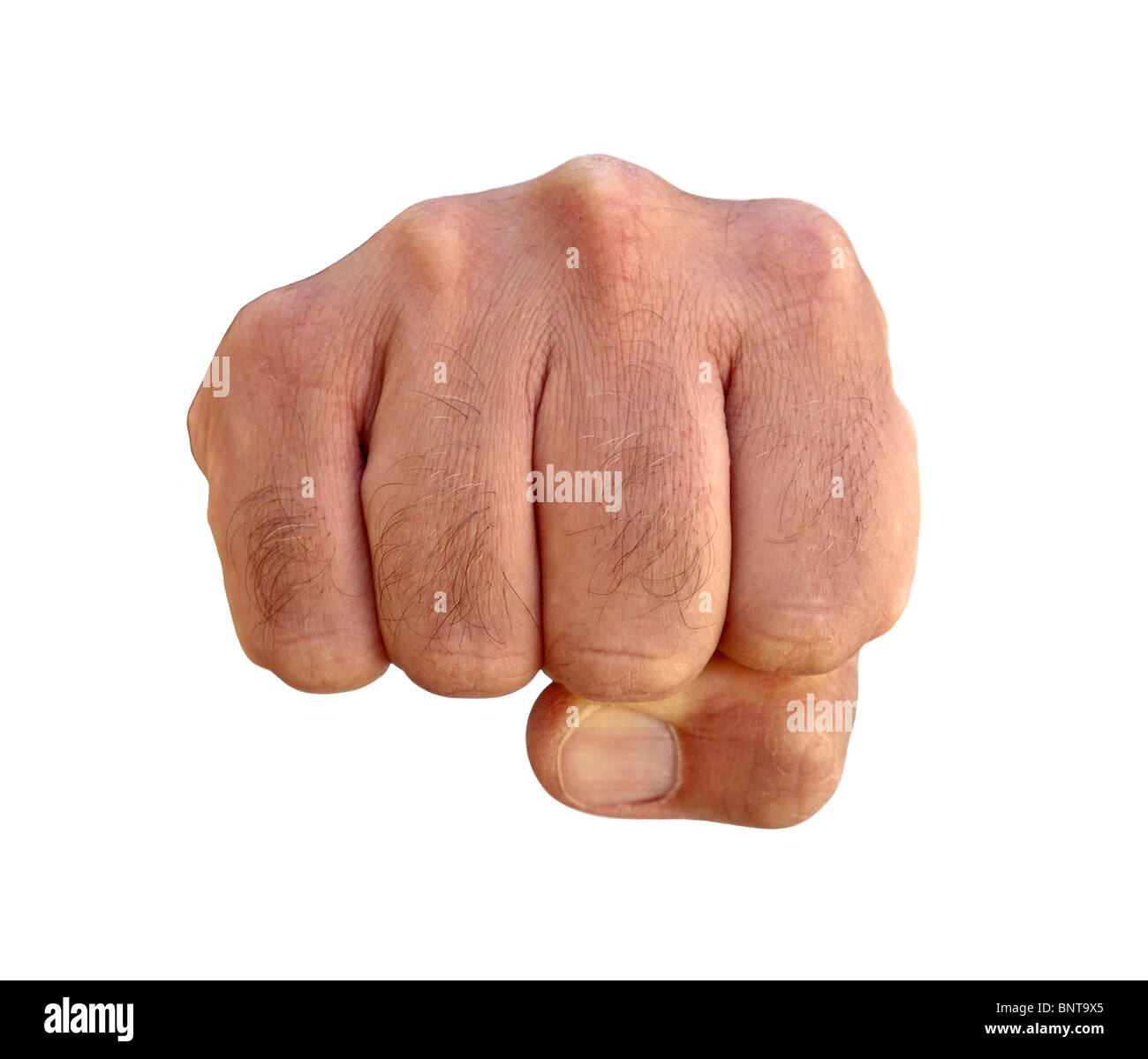 Very hairy knuckles from the fist of a furry man. - Stock Image