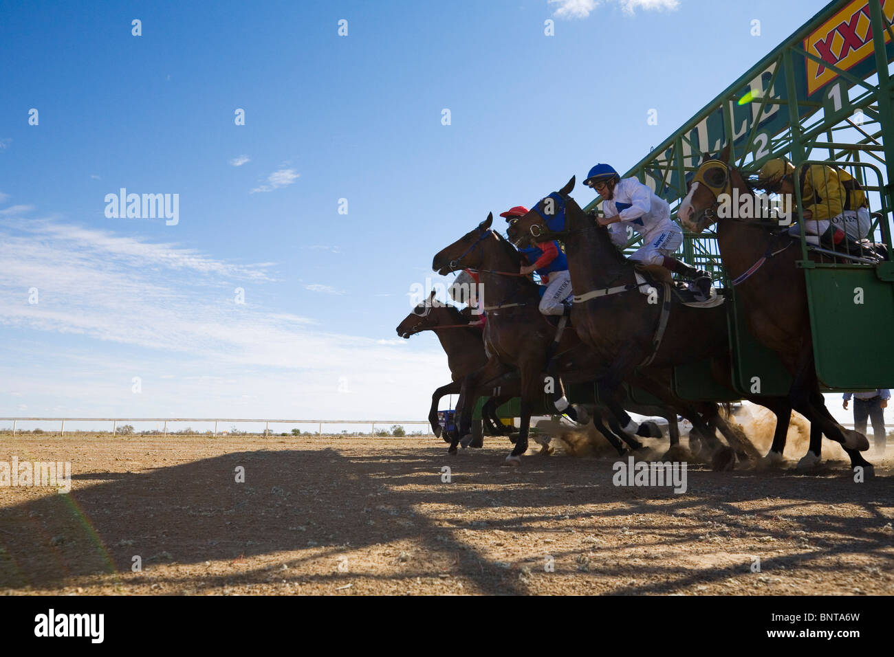 The horses jump from the starting barriers during the Birdsville Cup Races. Birdsville, Queensland, AUSTRALIA. - Stock Image