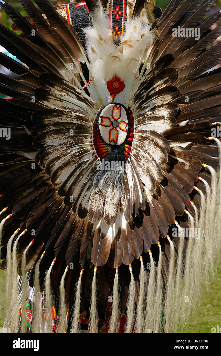 Eagle feather bustle on an elder Native Indian attending Six Nations Reserve Pow Wow Grand River Ontario Canada - Stock Image
