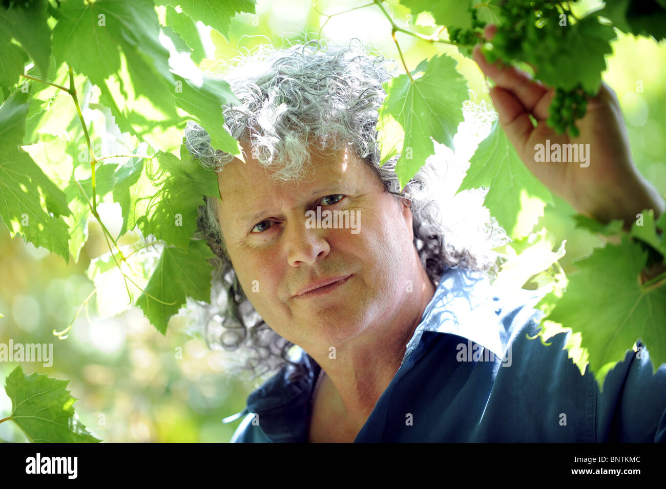 Philip Carr-Gomm from Lewes the head of the largest Druid group in Britain - Stock Image
