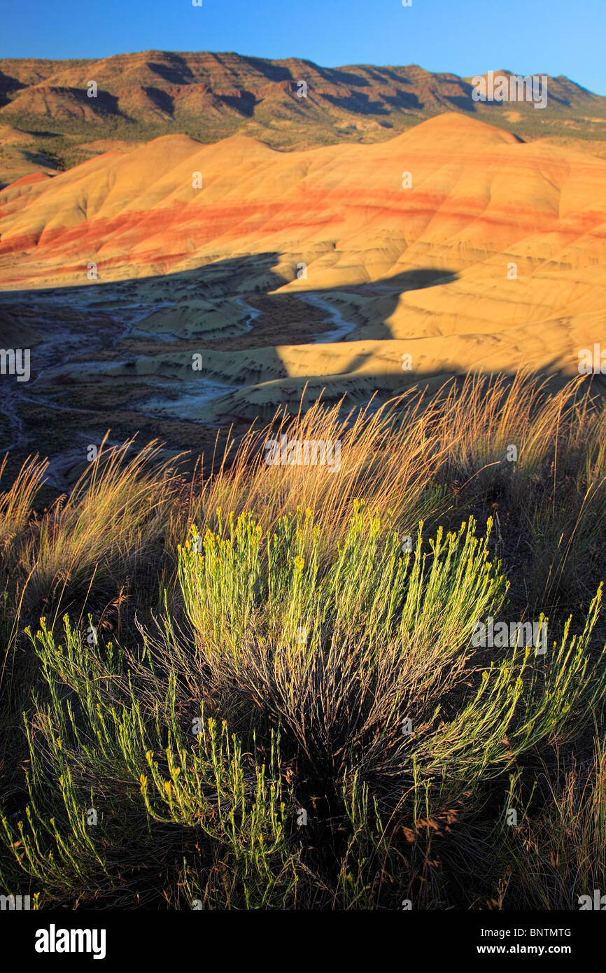 Painted Hills is one of the three units of the John Day Fossil Beds National Monument, located in Wheeler County, - Stock Image