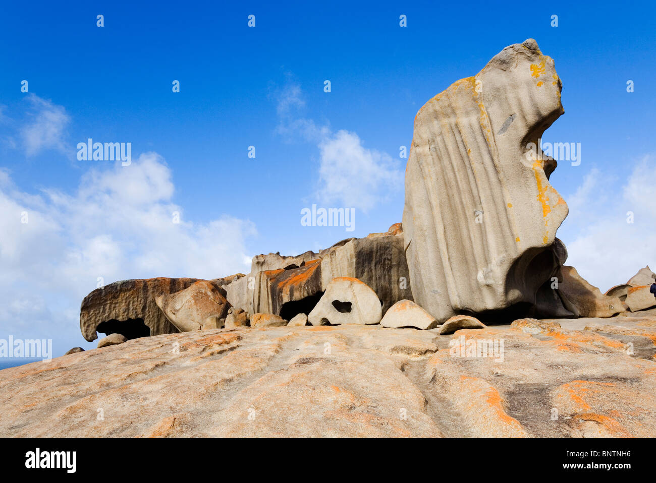 Remarkable Rocks on the south coast of Kangaroo Island, South Australia, AUSTRALIA. - Stock Image