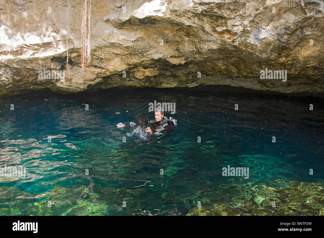 Scuba diving into Chac Mool, one of the cave systems on the Yucatan Peninsula of Mexico. - Stock Image