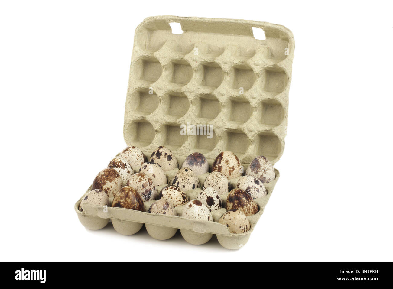 Quail eggs in a box on a white background - Stock Image