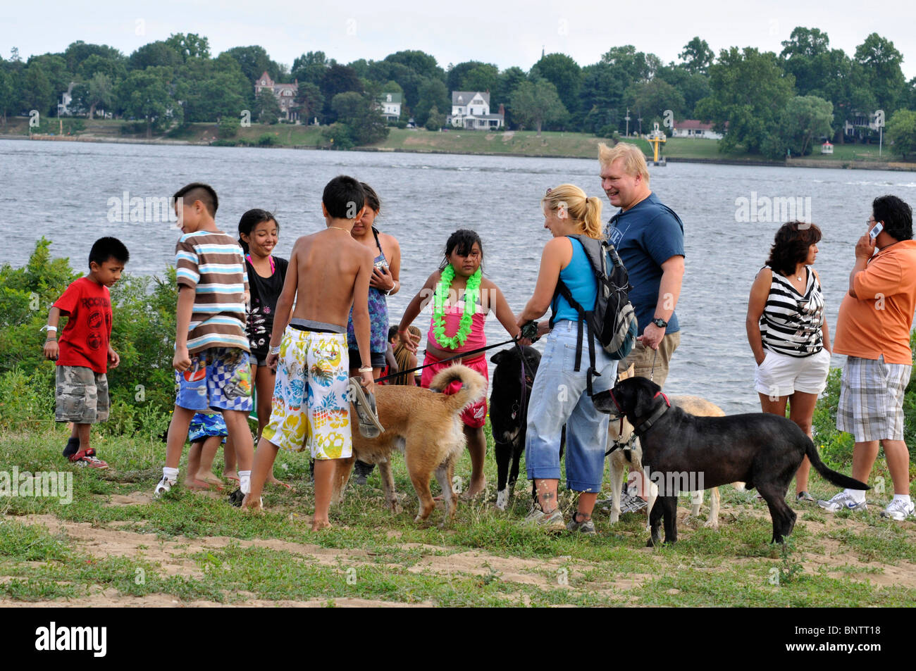 Man Playing With Dogs Stock Photos Man Playing With Dogs Stock Images Alamy