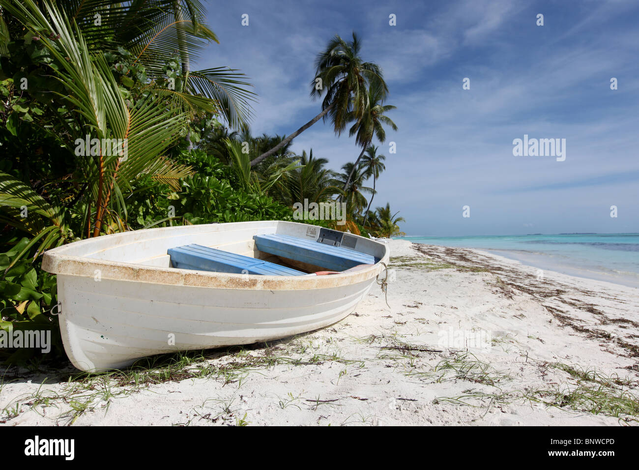 A white rowing boat on a deserted beach on Meeru Island Resort, Maldives, Asia - Stock Image