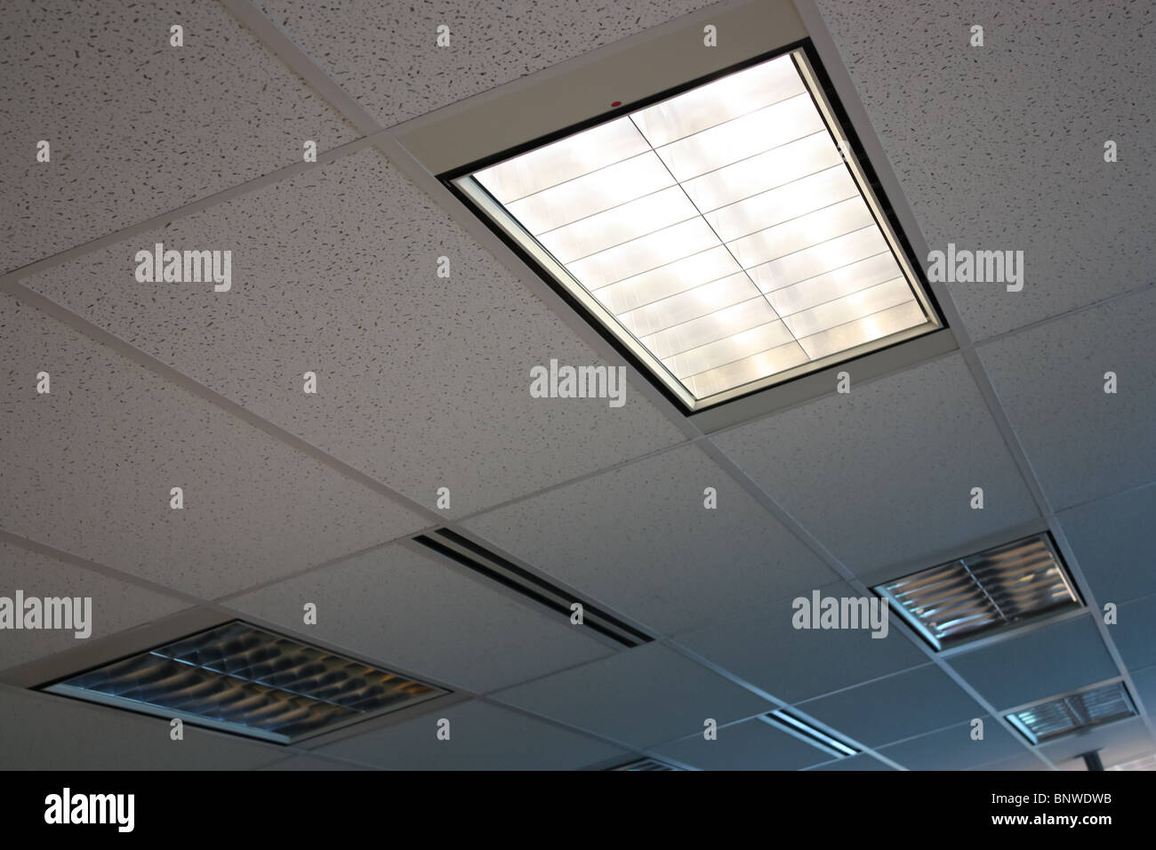 Office ceiling banquet hall lighting fixtures