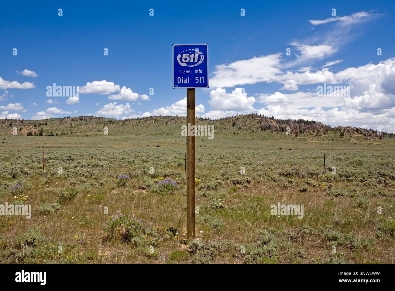 Sign posting the number to dial for travel information in Montana, at the border with Wyoming. - Stock Image