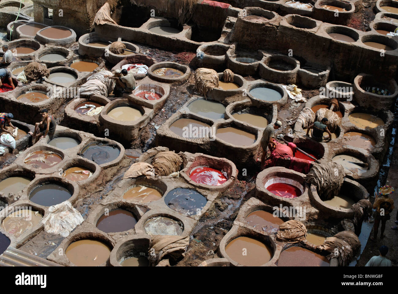 Workers at the Fes Tannery, Morocco - Stock Image