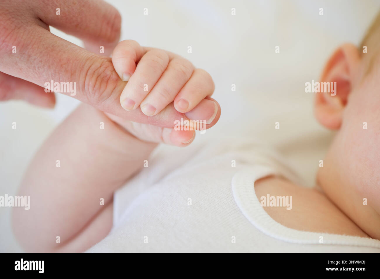 Infant holding onto adult's finger - Stock Image