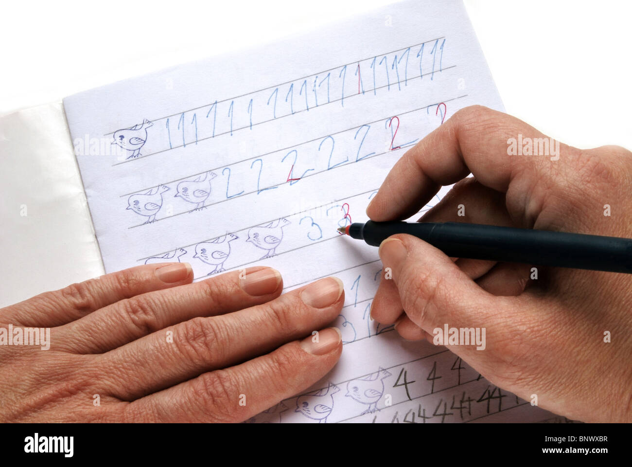 Teacher´s hand with red pen revising school homework - Stock Image