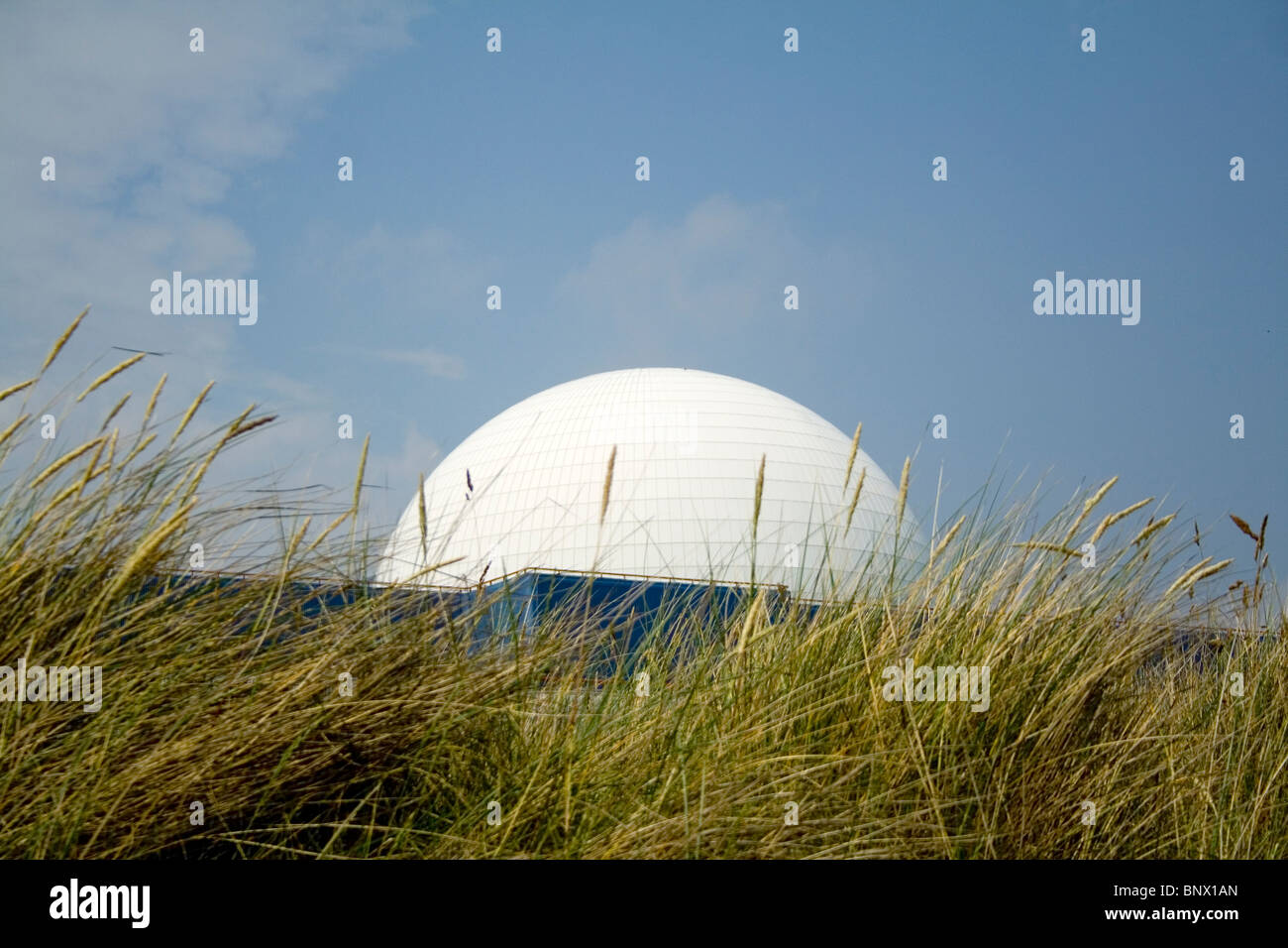 The iconic dome of Sizewell B nuclear power station appearing through the sea grass. Stock Photo