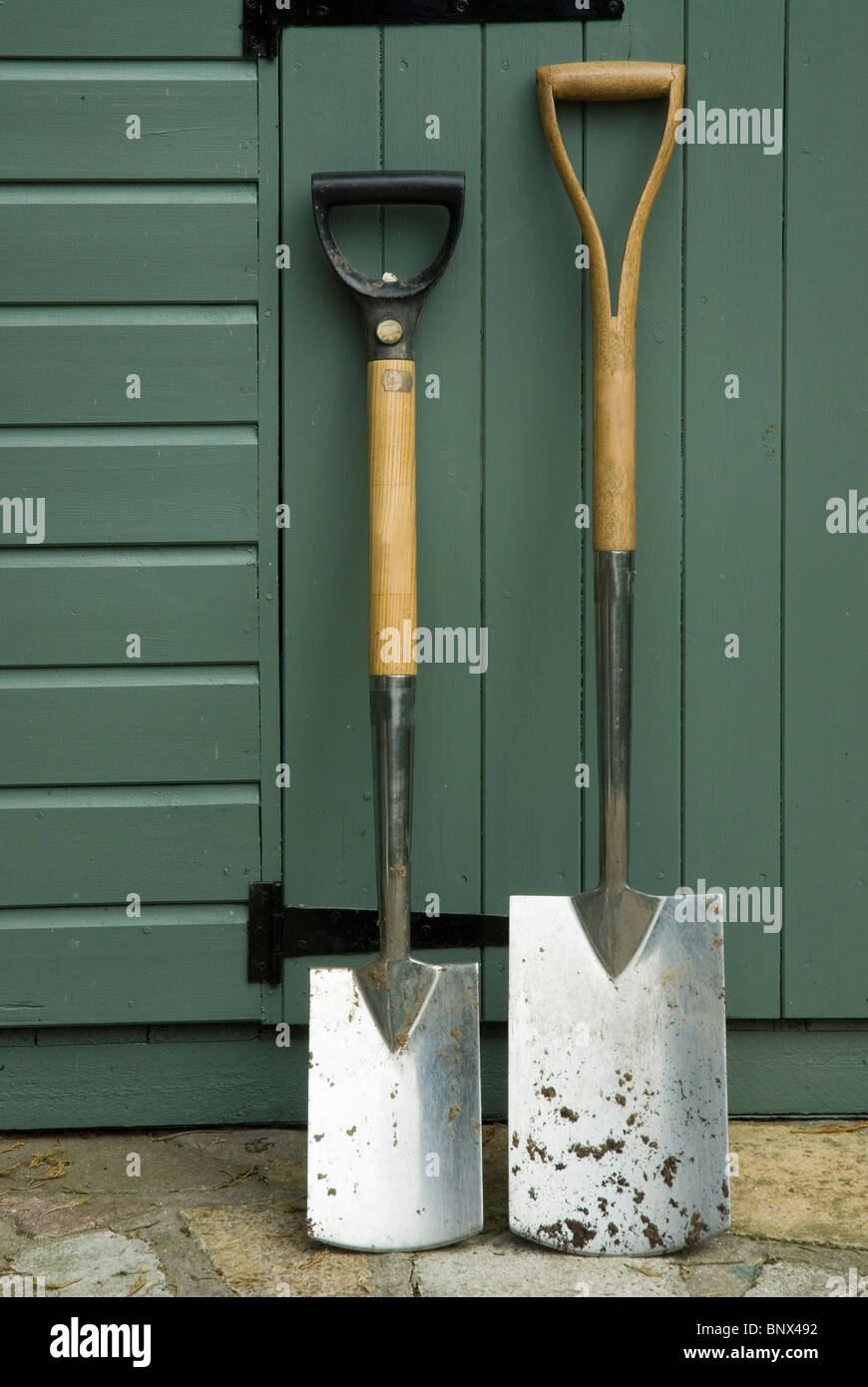 Border spade and digging spade against a shed - Stock Image