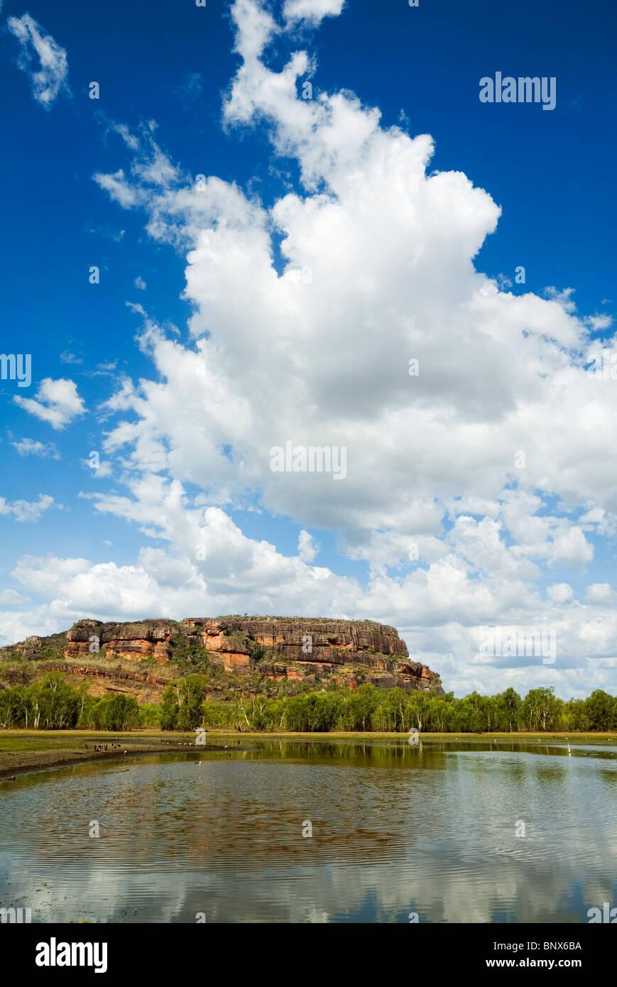 View across Anbangbang Billabong.  Nourlangie, Kakadu National Park, Northern Territory, AUSTRALIA. - Stock Image