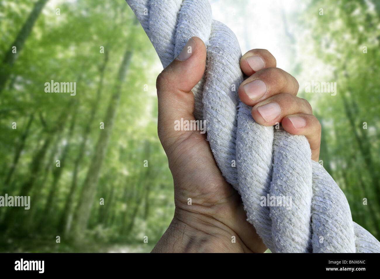 man hand grab grip strong climbing to green forest tree big rope - Stock Image