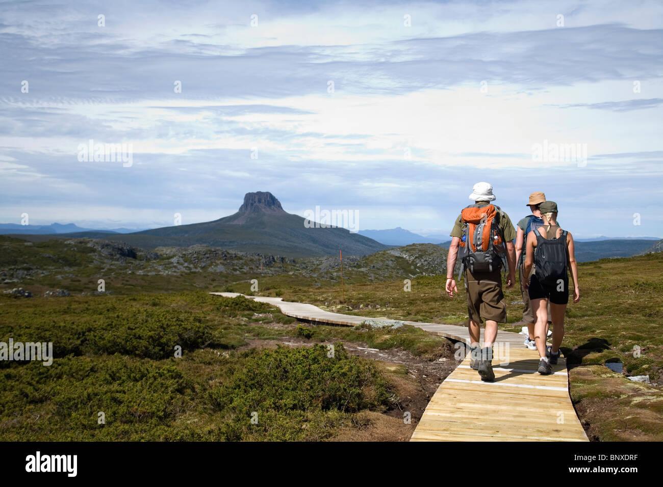 Hikers on the Overland Track on the Cradle Plateau.  Cradle Mountain-Lake St Clair National Park, Tasmania, AUSTRALIA - Stock Image