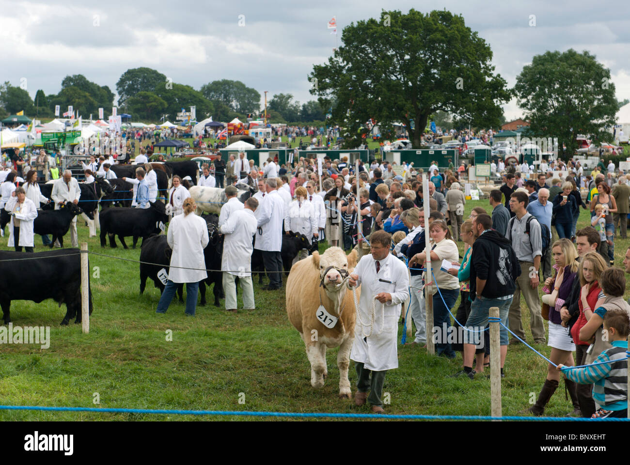 General view of showground at a country show in Mid Devon - Stock Image