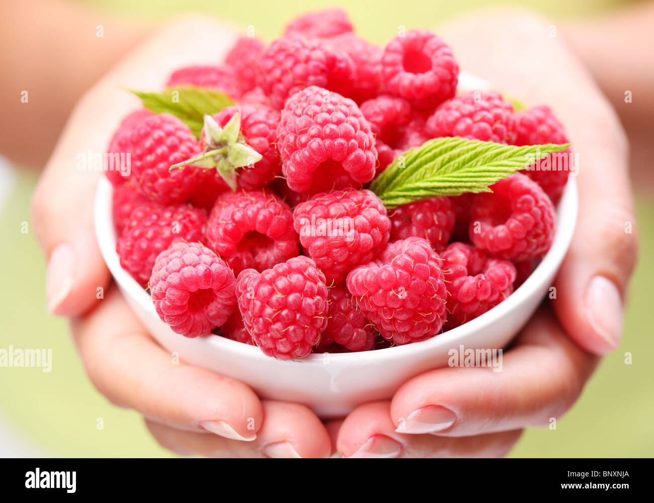 Crockery with raspberries in woman hands. - Stock Image