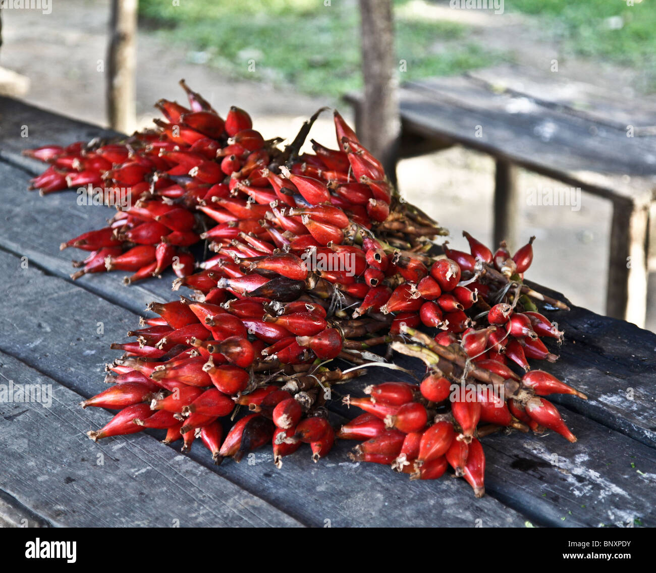 Red chilli peppers for sale on a wooden table street stall in Ranomafana village, south-eastern Madagascar. - Stock Image