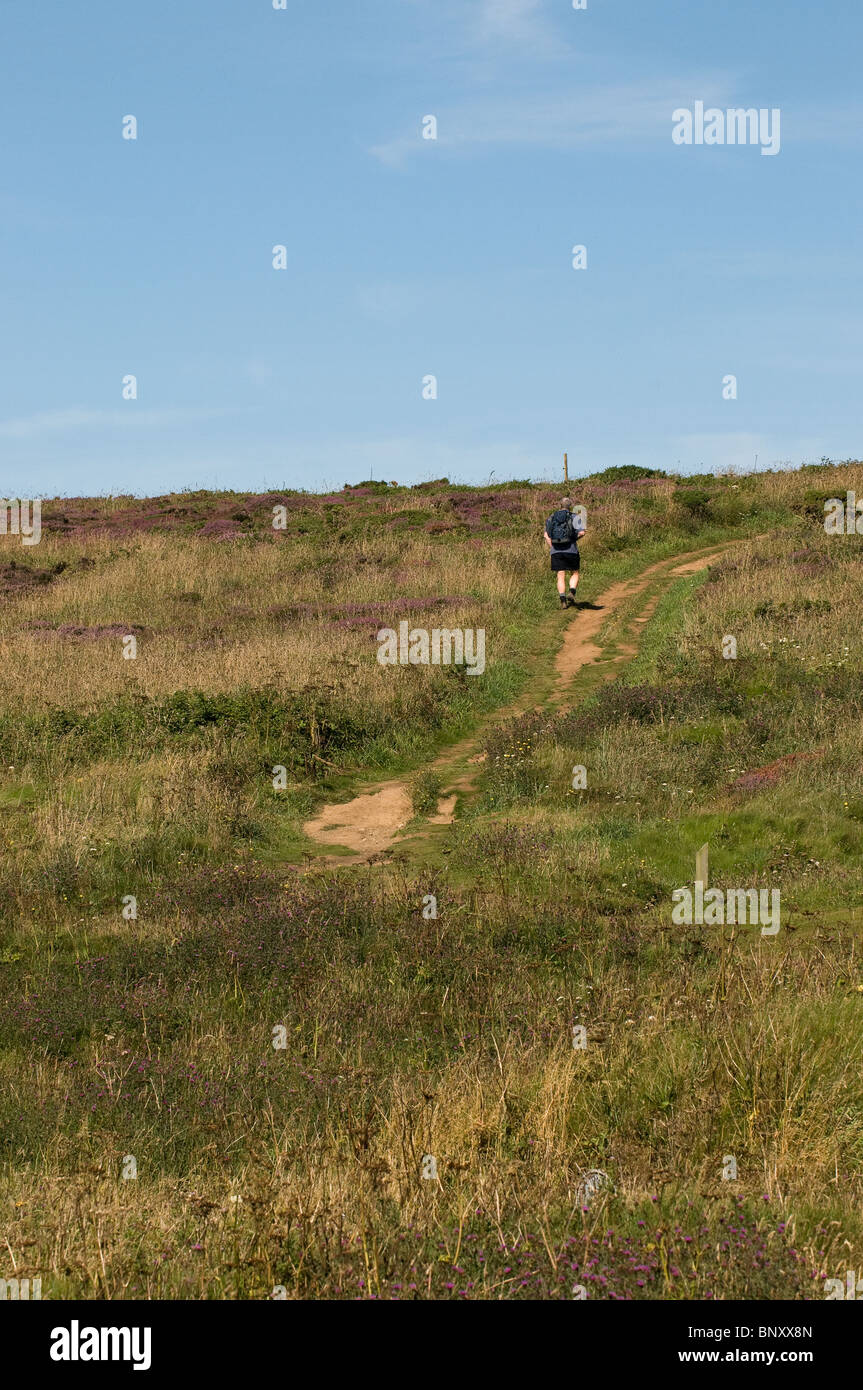A walker on the coastal path in Cornwall. Photo by Gordon Scammell - Stock Image