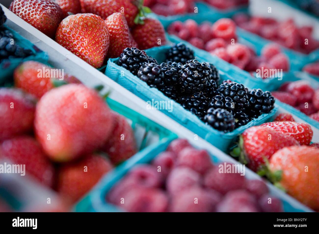 Baskets of berries at Farmer's Market, Santa Barbara, California - Stock Image