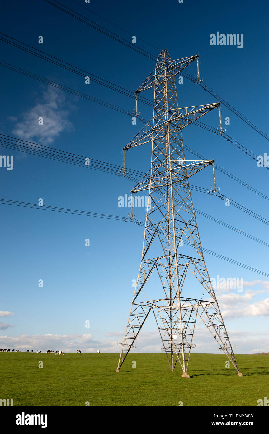 High Power electricity pylons crossing countryside in England - Stock Image