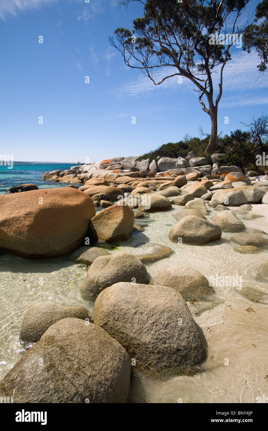 Scenic coastline at Binnalong Bay - part of the famed Bay of Fires region. St Helens, Tasmania, AUSTRALIA - Stock Image