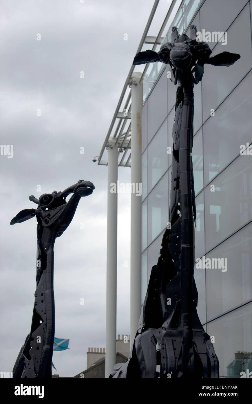 Giraffe sculptures made from metal car (automobile) parts outside the Omni Centre in Edinburgh, Scotland. Stock Photo
