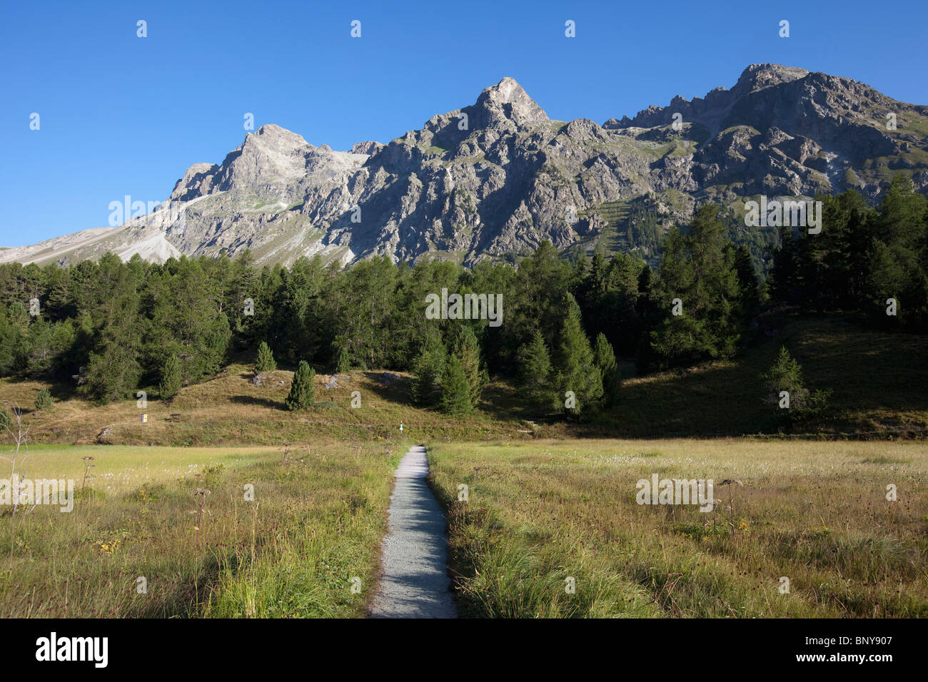 Small path heading into mountain forest - Stock Image